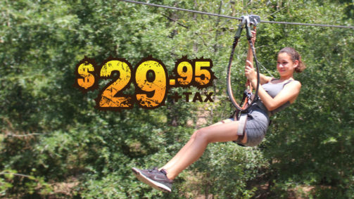 """Orlando Tree Trek Orlando Zip Lines Ziplines Orlando Up to 4 Rides Per Person May not be combined with any other offer CALL 407-390-9999 for Reservations Want to zip line only? Get in on the action and fly down on one of our giant 425' zip lines. Our dual zip lines line up so you can race each other or zip down next to family and friends. Our special zip line ticket is good for 4 rides per person on the same day. Participants must be at least 9 years old and be able to reach the tips of their fingers to a height of 5'9"""" while keeping their feet flat on the ground. Please make reservations by phone at 407-390-9999."""