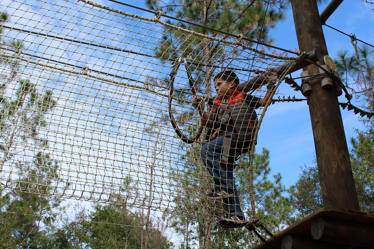 For A Real Florida Experience Experience Tree Trek