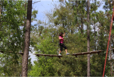 Orlando Tree Trek Adventure Park honors veterans families with special rate on Memorial Day