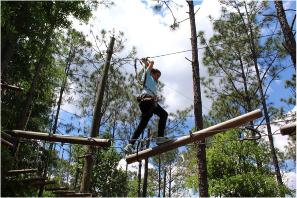 Orlando Tree Trek Adventure Park ranks No 1 in Fun & Games in Kissimmee Orlando Tree Trek Adventure Park ranks #1 in Fun & Games in Kissimmee