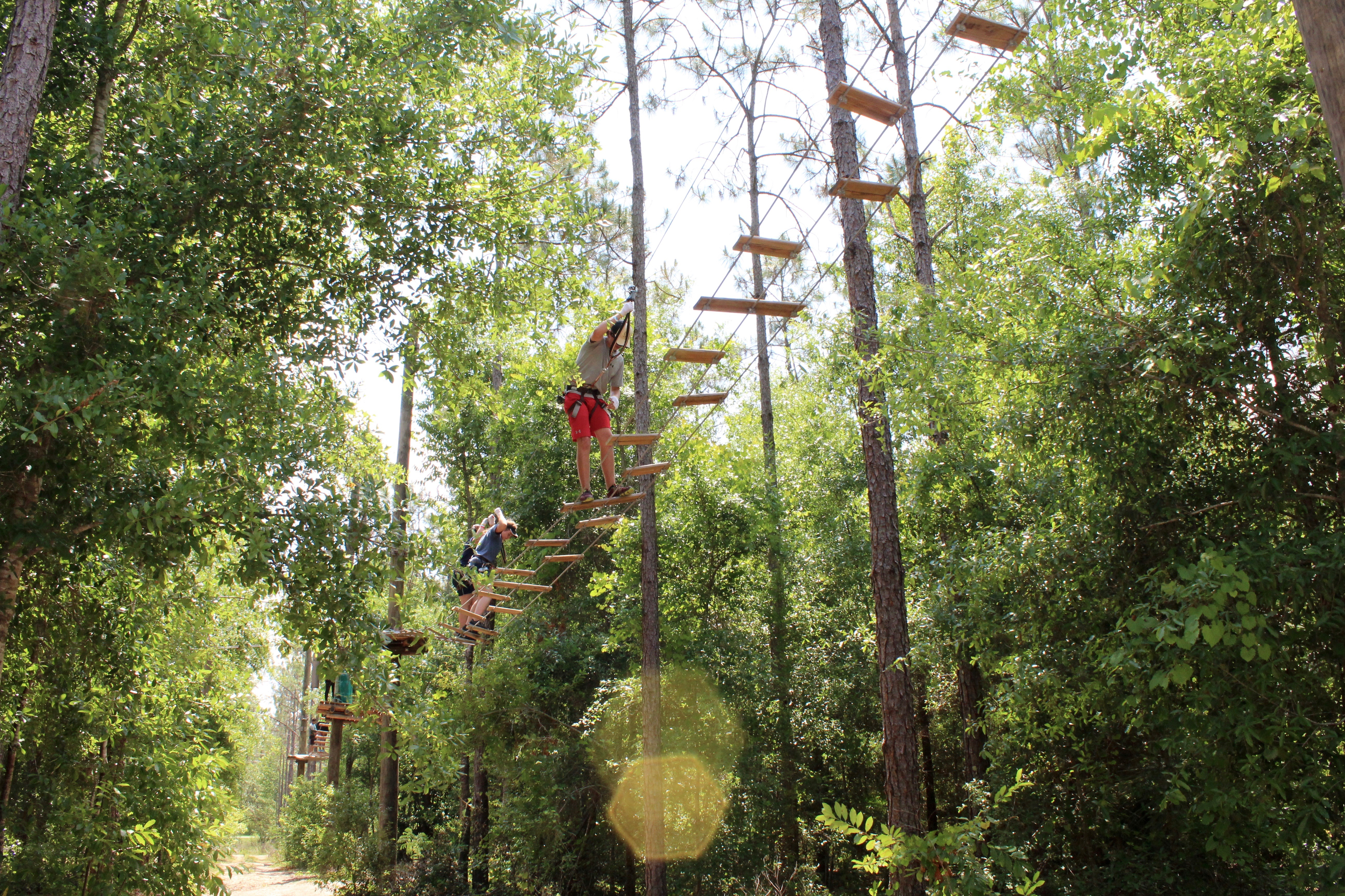 Guests climbing a ropes course on a sunny day
